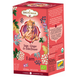 Tè e Tisane Ayurveda