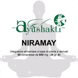 Niramay - Ayushakti
